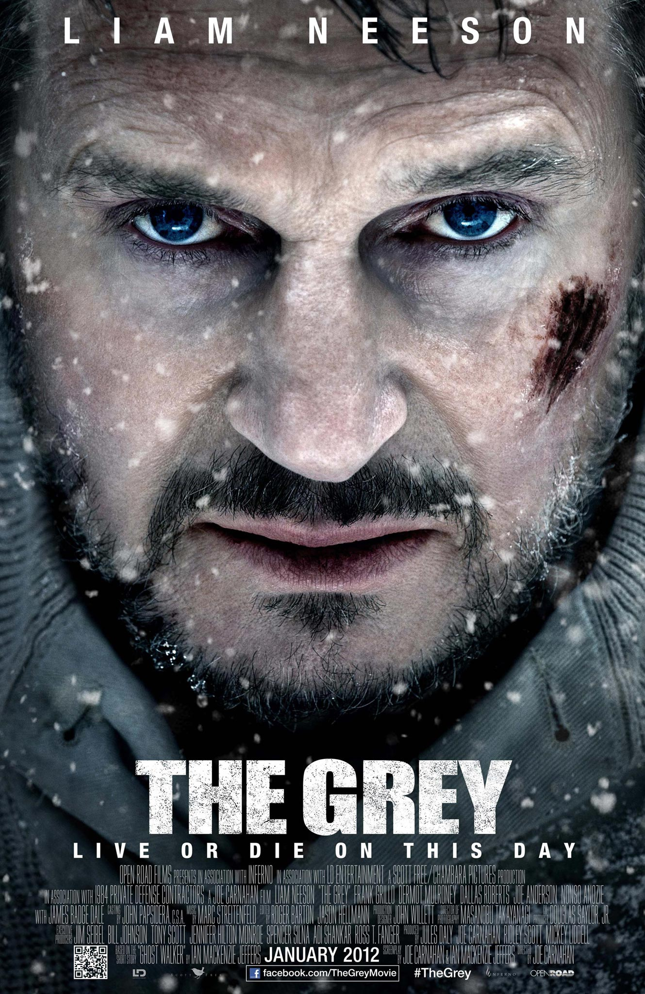 The Grey (2012) DVDRip XviD-MAX