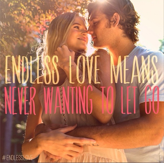 endless love movie quotes 2014 quotesgram