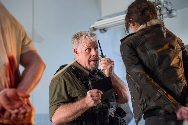 Ron Perlman in the series, The Blacklist