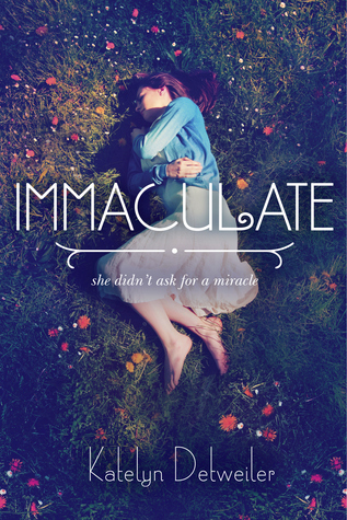 immaculate book cover